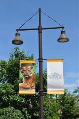 Omaha Zoo - 09