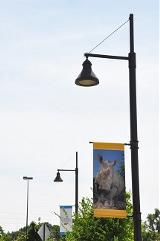 Omaha Zoo - 12