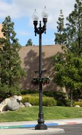 Area Lighting Poles (12)