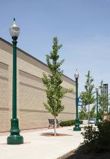 Area Lighting Poles (33)