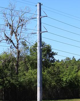newmark - hybrid pole