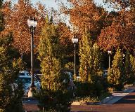 whatley-cf10-campus-composite-light-poles