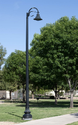 whatley-cf10-composite-park-pole