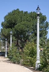 whatley-cf50-park-composite-light-poles