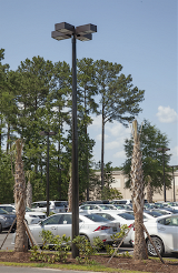 CMT-marathon-composite-light-pole-Hilton-Head