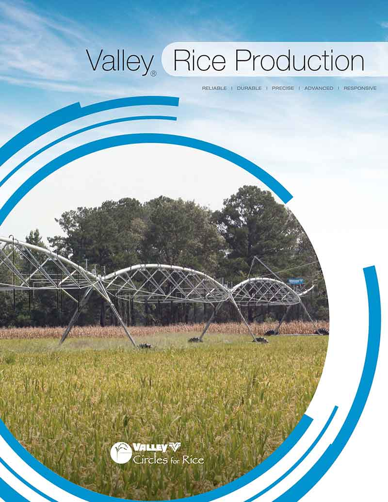 valley rice production brochure cover