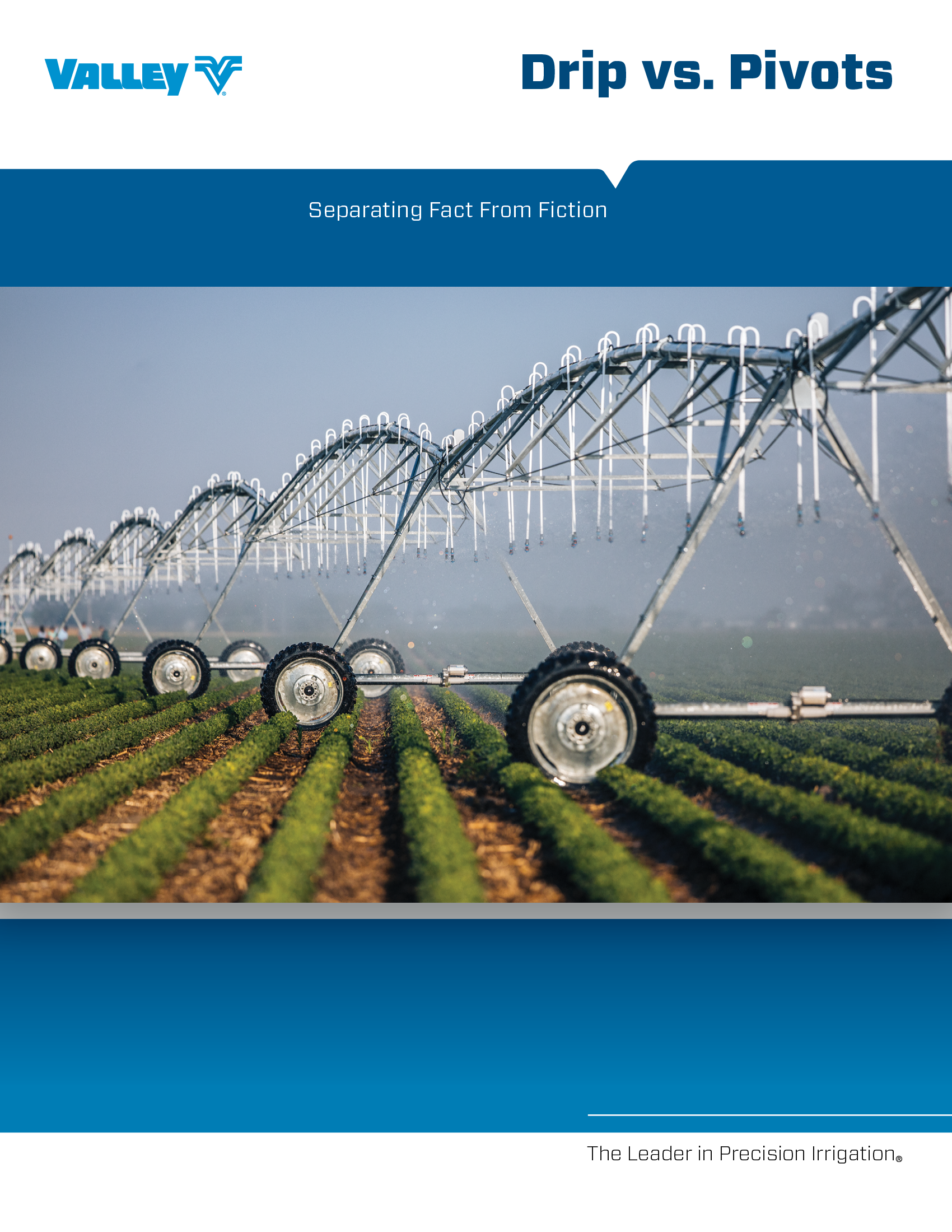 drip vs pivots brochure cover