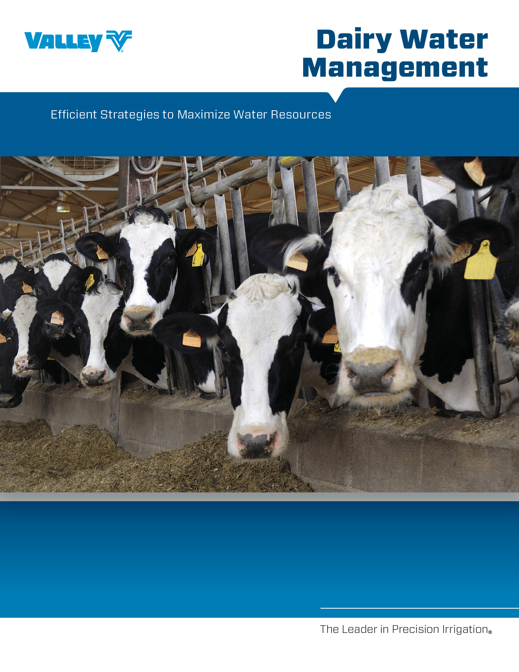 valley dairy management brochure cover