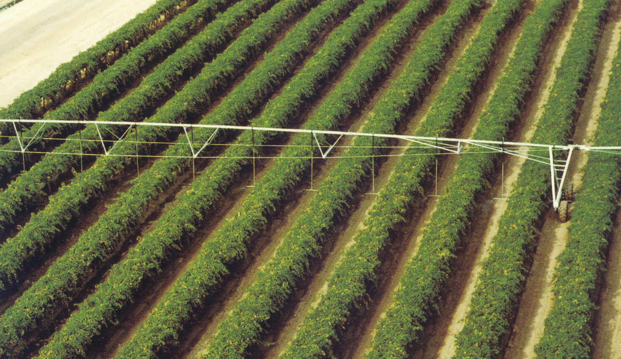 orchards - specialty crop solutions
