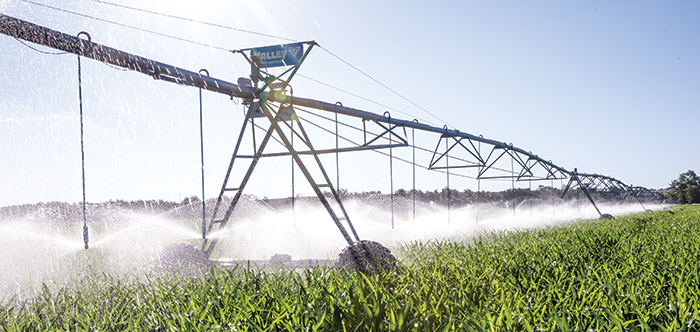 center pivot and linear irrigation sprinklers