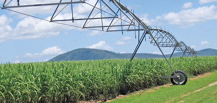 sugarcane production - specialty irrigation solutions