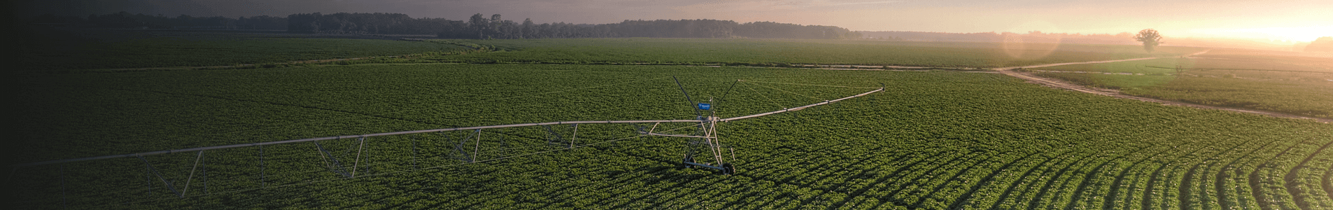 autonomous crop management