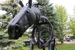 Pure Metal Galvanizing Brantford Horse