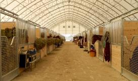 Tampa Galvanizing Gulfstream Park Horse Stalls