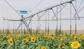 Valley Galvanizing Valmont Irrigation Machines