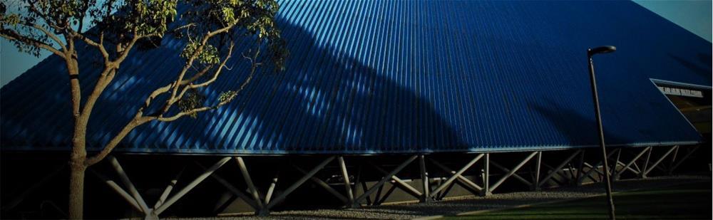 Galvanizing Walter Pyramid Banner