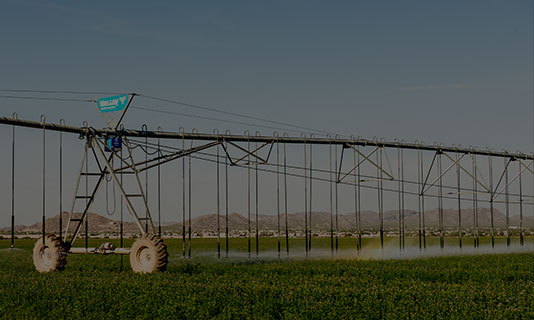 agsense applications - irrigation