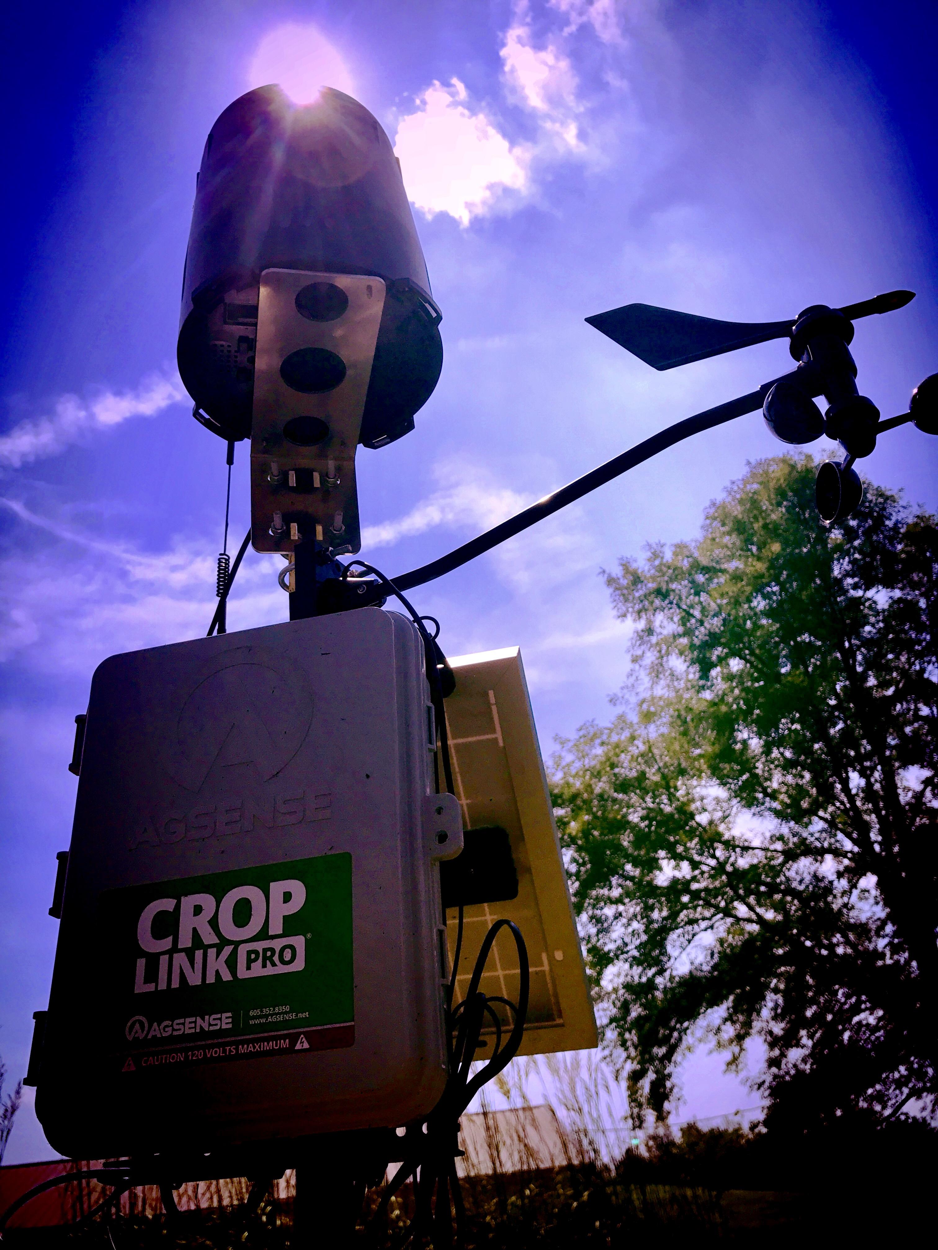 crop link