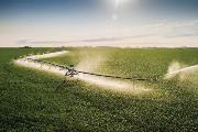 PrecisionCorner_corn_aerial_YorkNE_June2012_003_Hi_WEB