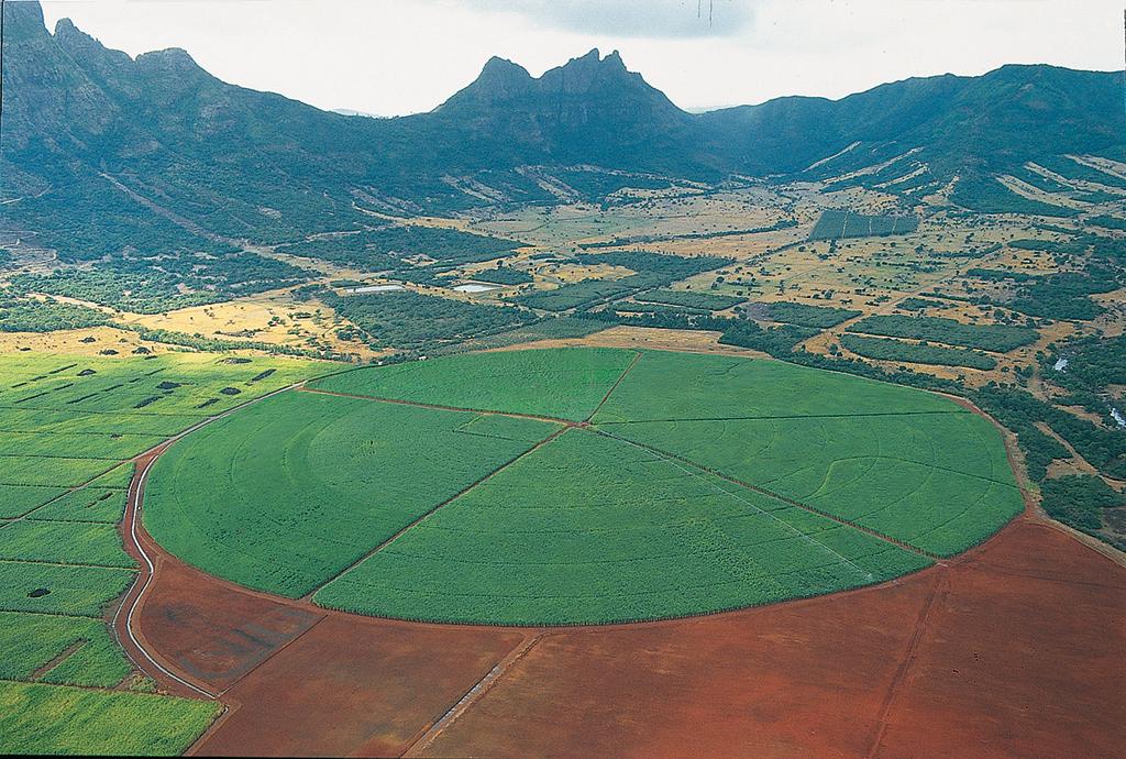 CROP%20CIRCLE-Mauritius