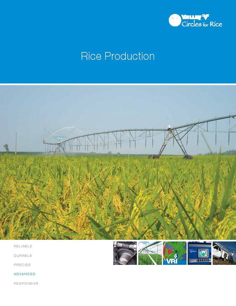 Valley Irrigation Rice