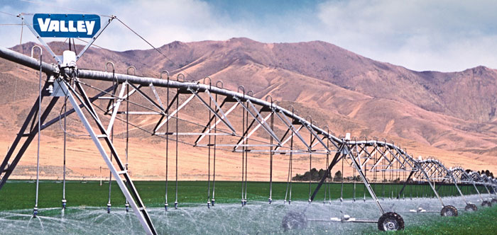 Irrigating Alfalfa with Center Pivots