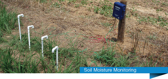 BaseStation Soil Moisture Monitoring