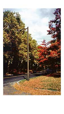 Breakaway-Poles-Carsonite-News