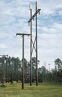 Shakespeare-Pole-Top-Extension-49