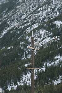Shakespeare-T-D-Tuff-Pole-Mountain-46