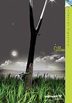 sillem-pages-cov