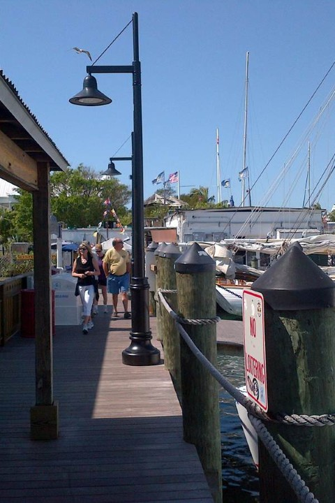 Whatley CF50 composite light poles for marina installation