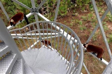 Galvanized Stairs and Handrail