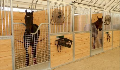 Galvanized Steel Horse Stalls Tampa